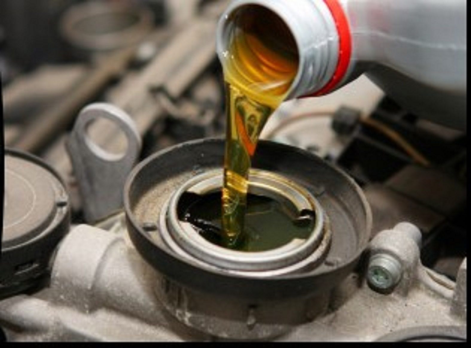 $19.95 Oil Change or $44.95 Synthetic Oil Change
