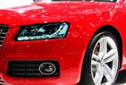 Auto Body Specialists Inc