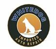 Whitedog Import Auto Service